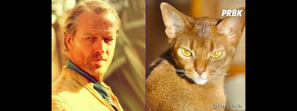 """De """"Game of Thrones"""", Jorah Mormont (Iain Glen) e seu irmão gêmeo felino"""