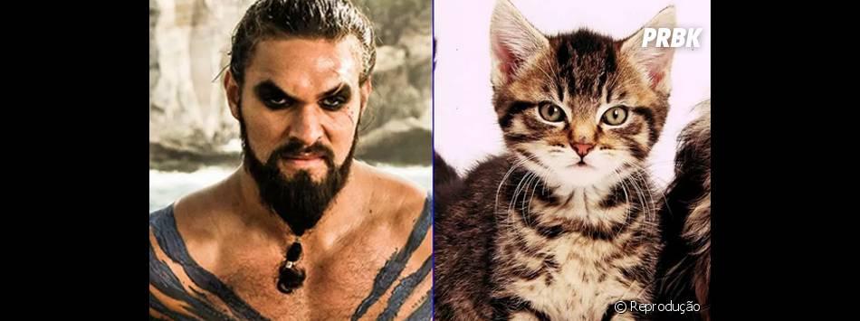 """O gatinho é um pouquinho mais fofo que o Khal Drogo (Jason Momoa) de """"Game of Thrones"""", né?"""
