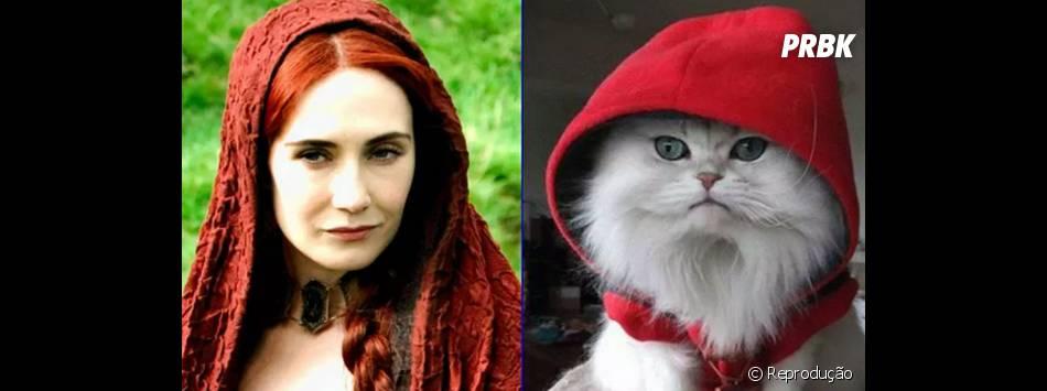 """Esse seria um bom gato pra Melisandre (Carice van Houten) de """"Game of Thrones"""", né?"""