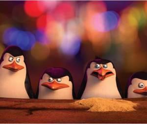 """""""Os Pinguins de Madagascar"""" é um derivado da franquia """"Madagascar"""""""