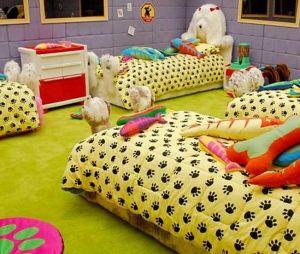 """""""BBB"""": TV Colosso foi homenageada em decoração de um dos quartos do programa"""