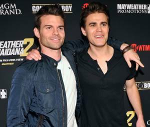 "Paul Wesley disse que queria viver Elijah, o personagem de Daniel Gillies, de ""The Originals"""