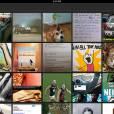 O Imgur permite fazer o upload de imagens para postar depois