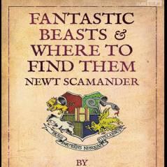 """Spin-off de """"Harry Potter"""": Hogwarts americana? Nova escola de bruxaria deve ser localizada nos EUA!"""