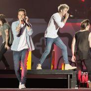 One Direction: integrantes destroem boneco com rosto de Naughty Boy, após polêmica de Zayn Malik