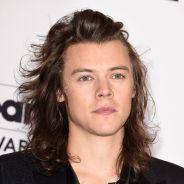 Harry Styles, do One Direction, no cinema? Ator revela que está recebendo várias propostas!