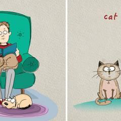Cão x Gato: artista mostra as 5 diferenças mais comuns entre esses bichinhos de estimação!