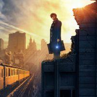 """De """"Animais Fantásticos"""": novo vídeo traz imagens inéditas e comentários de J.K. Rowling"""