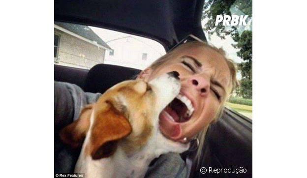 As vezes o seu bichinho nem quer participar da selfie. Respeita, ow!