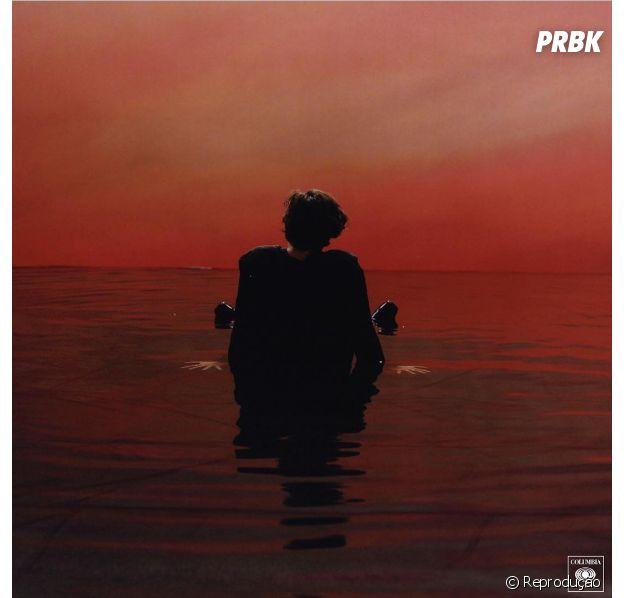 Harry Styles deixa fãs ansiosos com o lançamento do seu primeiro álbum!