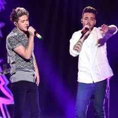 Liam Payne e Niall Horan, do One Direction, se reencontram e fazem a alegria dos fãs!