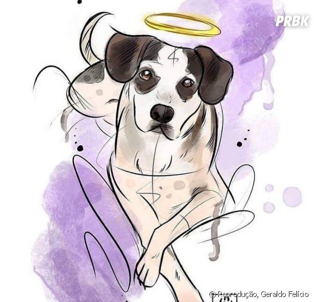 """Após morte do """"cachorro do Carrefour"""", veja como ajudar animais de rua!"""