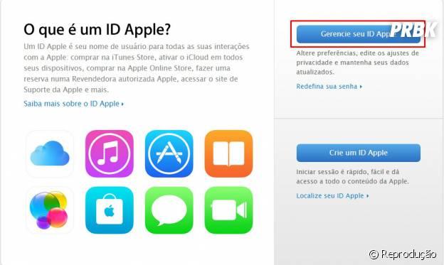 """Depois clique """"Gerenciar seu ID Apple"""""""