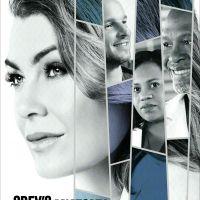 """""""Grey's Anatomy"""" é renovada para sua 17ª temporada e os fãs estão pirando!"""