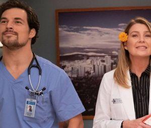 """Em """"Grey's Anatomy"""", Meredith (Ellen Pompeo) se apaixonaria por cineasta, não DeLuca (Gioacomo Gioanniotti)"""
