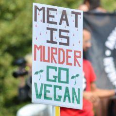 Desculpa o Textão, mas o veganismo não precisa ser um estilo de vida inacessível