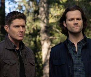 """""""Supernatural"""": vídeo promocional mostra melhores momentos da série"""