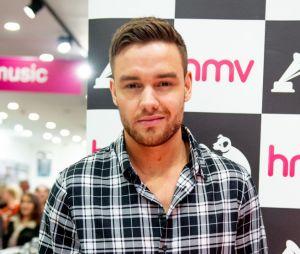 Liam Payne diz que não saberia mais conversar com Harry Styles porque o artista mudou muito desde o One Direction