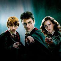 """A Netflix adicionou mais alguns filmes da saga """"Harry Potter"""" e o Twitter tá cheio de memes"""