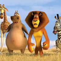 TOP 5: relembre animações com animais que adoram salvar vida