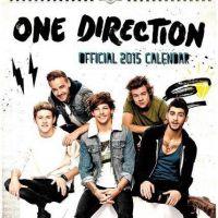 One Direction lança seu calendário 2015! Corre pra ver o resultado!