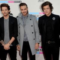 """One Direction comenta quais integrantes sobreviveria aos """"Jogos Vorazes"""""""