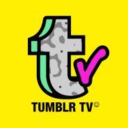 Tumblr lança TV Tumblr para concorrer com Giphy e compartilhar GIFs em todas as redes sociais!