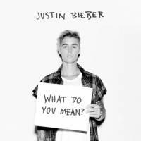 """Justin Bieber lança o seu novo single """"What Do You Mean"""" e fãs vão à loucura!"""