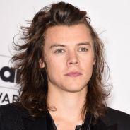 """Harry Styles, do One Direction, atuando em série da HBO?! Mick Jagger quer o cantor na série """"Vinyl"""""""
