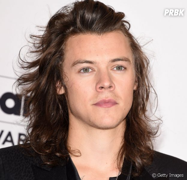 Harry Styles atuando nas telinhas?!