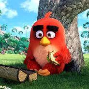 """De """"Angry Birds: O Filme"""": 1º trailer explica o mau-humor das aves mais fofinhas do momento. Veja!"""