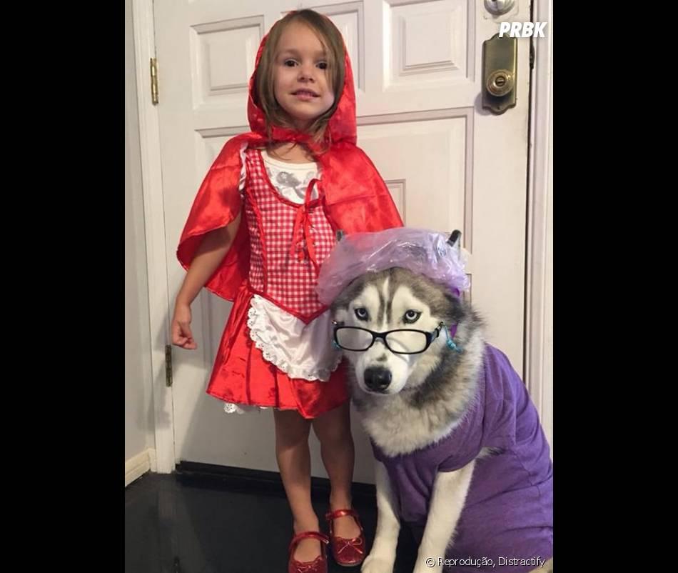Chapeuzinho Vermelho não tem com o que se preocupar. Esse lobo é tudo, menos mal!