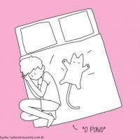 Dormir com animal de estimação? Veja 10 situações que mostram como isso é uma tarefa impossível!