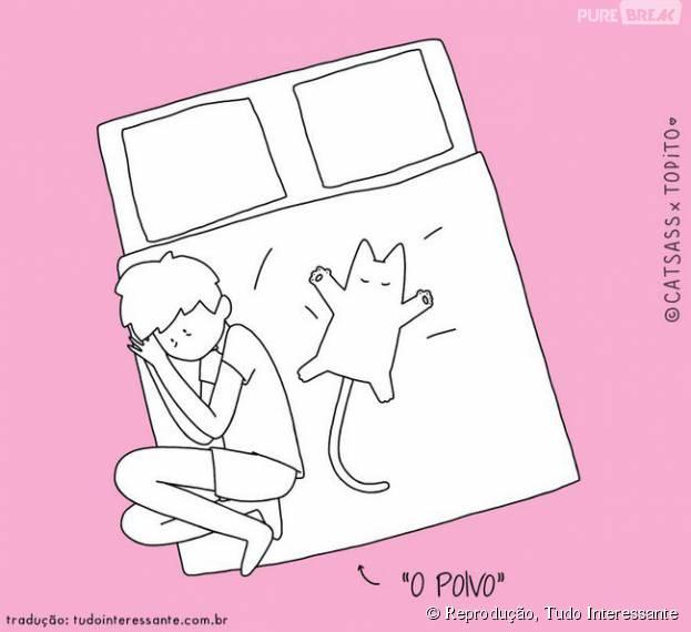 Sempre tem aquele gato que se espalha na cama e não deixa nenhum espacinho pro dono, né?