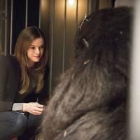 """Em """"The Flash"""": na 2ª temporada, Gorilla Grodd e pai de Barry voltam na sétima temporada!"""