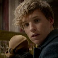 """De """"Animais Fantásticos e Onde Habitam"""": spin-off de """"Harry Potter"""" ganha novo teaser trailer!"""
