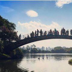 São Paulo: 8 lugares inesquecíveis que você simplesmente não pode deixar de ir