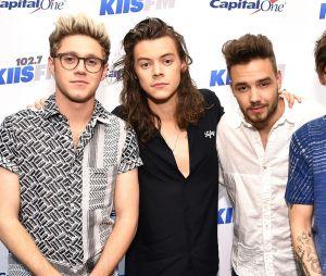 Niall Horan e a banda One Direction pretendiam voltar com os trabalhos em grupo em 2018