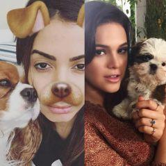 Anitta, Bruna Marquezine e as celebridades mais apaixonadas pelos seus pets!