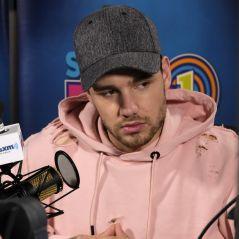 Liam Payne vai lançar seu primeiro CD em janeiro de 2018. Saiba detalhes!