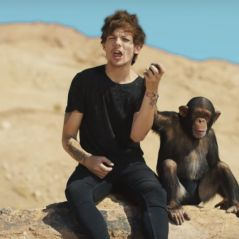 One Direction, Taylor Swift, Selena Gomez e mais: 10 clipes que ninguém entende!