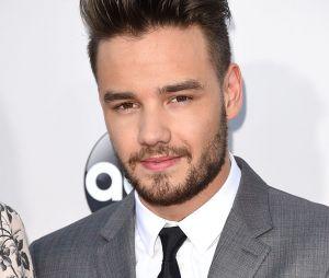 Liam Payne conta que os cinco integrantes do One Direction tem que obter sucesso individualmente antes do retorno da boyband