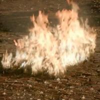 """Phoebe Tonkin, de """"The Originals"""", define última cena de Hayley: """"Momento de partir o coração"""""""