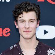 """Shawn Mendes em um filme? Cantor ainda pensa em atuar: """"Encontrar papel certo"""""""