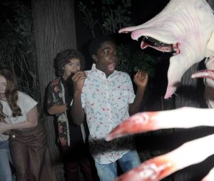 "De ""Stranger Things"": Gaten Matarazzo, Caleb McLaughlin, Sadie Sink e Priah Ferguson visitam o Mundo Invertido no Halloween Horror Nights"