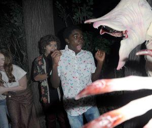 "De ""Stranger Things"": Gaten Matarazzo, Caleb McLaughlin, Sadie Sink e Priah Ferguson visitam o Mundo Invertido no Halloween Horror Nights"