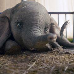 """""""Dumbo"""" traz bom entretenimento num filme em que personagem-título não é protagonista"""