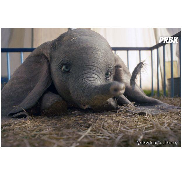 """Remake de """"Dumbo"""" traz um novo olhar sobre o conto do elefante voador"""
