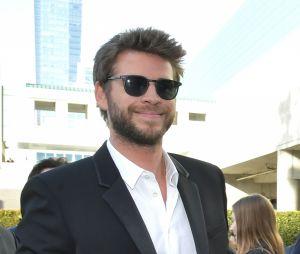 Miley Cyrus e Liam Hemsworth não se traíram, garante a cantora