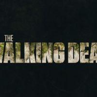 """Sobreviventes ameaçam Sussurradores em teaser inédito da 10ª temporada de """"The Walking Dead"""""""